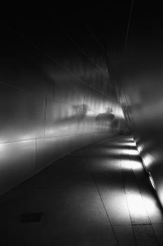 Helen K. Garber, Disney Hall Noir